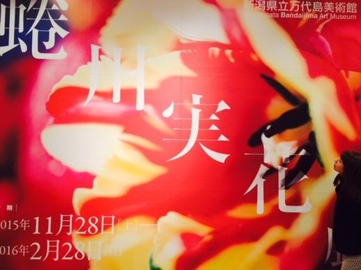 蜷川美花展写真.JPG